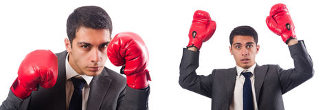 The young businessman with box gloves isolated on white Royalty Free Stock Photo