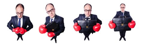Young businessman boxer isolated on white. The young businessman boxer isolated on white royalty free stock image