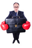 Young businessman boxer Stock Images