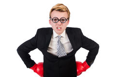 Young businessman boxer Royalty Free Stock Photography