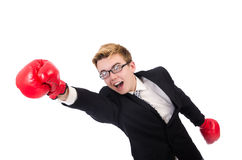 Young businessman boxer Royalty Free Stock Image