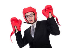 Young businessman boxer Royalty Free Stock Images