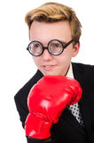 Young businessman boxer Stock Image