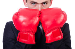 Young businessman boxer isolated Stock Photo
