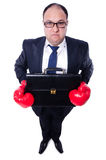 Young businessman boxer isolated Stock Photography