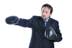 Young businessman with boxing Stock Images
