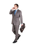 Young businessman with briefcase Royalty Free Stock Images
