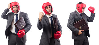 Young businessman with briefcase and box gloves  isolated on whi Royalty Free Stock Images