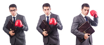 Young businessman with briefcase and box gloves  isolated on whi Royalty Free Stock Photography