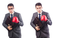 Young businessman with briefcase and box gloves  isolated on whi Stock Photo