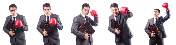 Young businessman with briefcase and box gloves  isolated on whi Stock Photos
