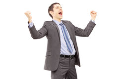 Young businessman gesturing excitement with raised hands Royalty Free Stock Image
