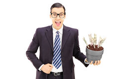 Young businessman holding a flowerpot with US dollars in it Royalty Free Stock Photography