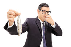 Young businessman holding a stinky fish. Isolated on white background stock image