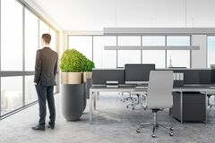 Young businessman in modern office royalty free stock image
