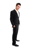 Young Businessman posing. Isolated in white background royalty free stock photography