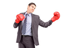 Young businessman posing with red boxing gloves Stock Photos