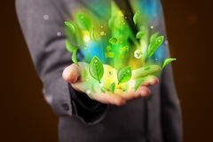 Young businessman presenting eco green leaf recycle energy conce Royalty Free Stock Photo