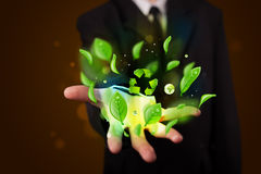 Young businessman presenting eco green leaf recycle energy conce Stock Photos
