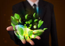 Young businessman presenting eco green leaf recycle energy conce Royalty Free Stock Image