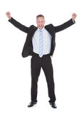 Young businessman in a suit standing cheering Royalty Free Stock Image