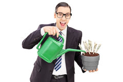 Young businessman watering money in a flowerpot Royalty Free Stock Photos