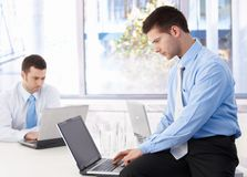 Young businessmen working on laptop. In bright office Royalty Free Stock Photos