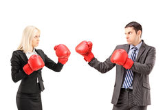 Young businesspeople with boxing gloves having a fight stock photos