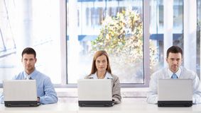 Young businesspeople with laptops Royalty Free Stock Image