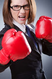 Young businesswoman - boxing concept Stock Photography