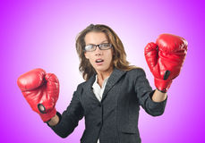 Young businesswoman in boxing concept Royalty Free Stock Image