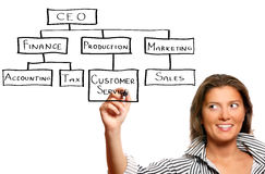 Young businesswoman and business hierarchy Royalty Free Stock Photography