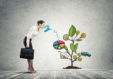 Young businesswoman in empty room watering drawn growth concept with can Royalty Free Stock Images