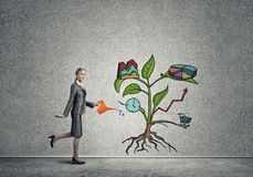 Young businesswoman in empty room watering drawn growth concept with can Royalty Free Stock Photography