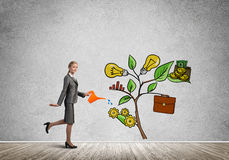 Young businesswoman in empty room watering drawn growth concept with can. Attractive businesswoman presenting investment and financial growth concept Stock Photos