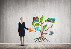 Young businesswoman in empty room watering drawn growth concept with can. Attractive businesswoman presenting investment and financial growth concept Royalty Free Stock Photography