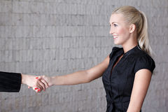 Young businesswoman handshake in office Royalty Free Stock Image