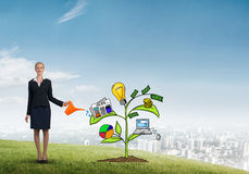 Young businesswoman outdoors watering drawn growth concept with can Royalty Free Stock Images