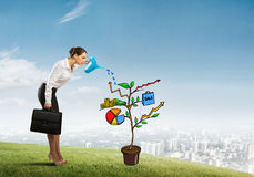 Young businesswoman outdoors watering drawn growth concept with can Royalty Free Stock Photography