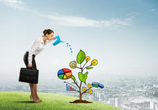 Young businesswoman outdoors watering drawn growth concept with can Royalty Free Stock Photos