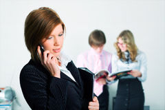 Young businesswoman on the phone. Royalty Free Stock Images