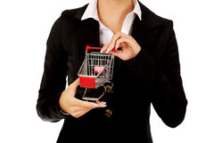 Young businesswoman with shopping trolley Stock Photos