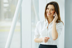 Young businesswoman talking on the mobile phone Royalty Free Stock Images