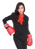 Young businesswoman using boxing gloves. Isolated on white background Stock Image