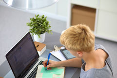 Young businesswoman working on a laptop Stock Images
