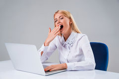Young businesswoman working at laptop computer Stock Images