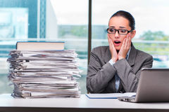 The young businesswoman working in the office. Young businesswoman working in the office Stock Images