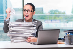 The young businesswoman working in the office. Young businesswoman working in the office Stock Photos