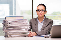 The young businesswoman working in the office. Young businesswoman working in the office Royalty Free Stock Image