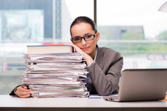 The young businesswoman working in the office. Young businesswoman working in the office Royalty Free Stock Photos